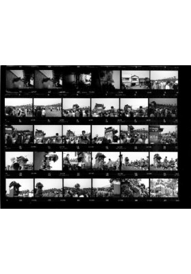 Contact Print for BW